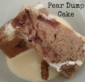 Dumpcake1